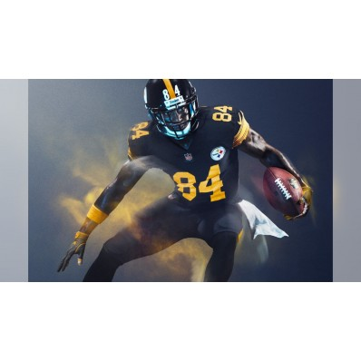 steelers color rush jersey brown